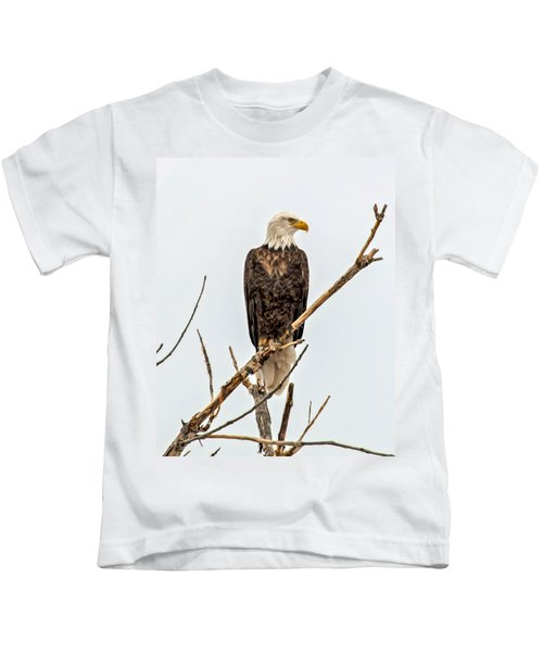 Bald Eagle On A Branch Kids T-Shirt