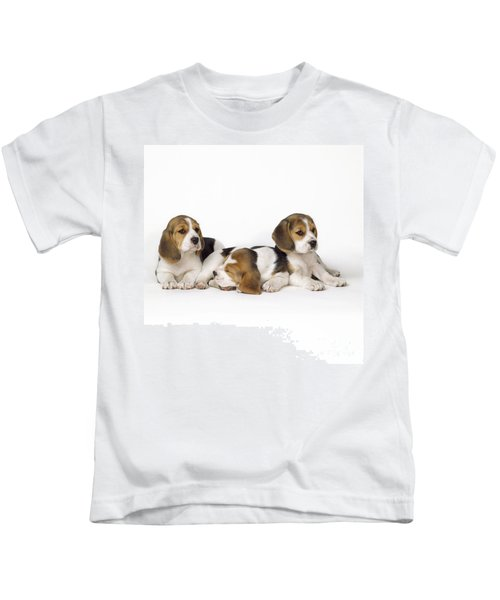 Beagle Puppies, Row Of Three, Second Kids T-Shirt