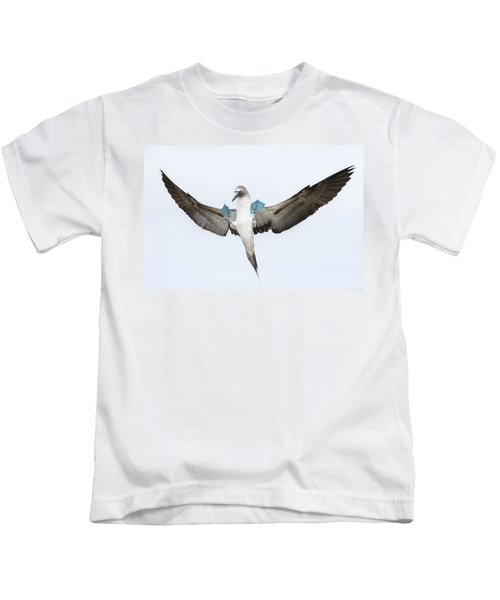 Blue-footed Booby Landing Galapagos Kids T-Shirt by Tui De Roy