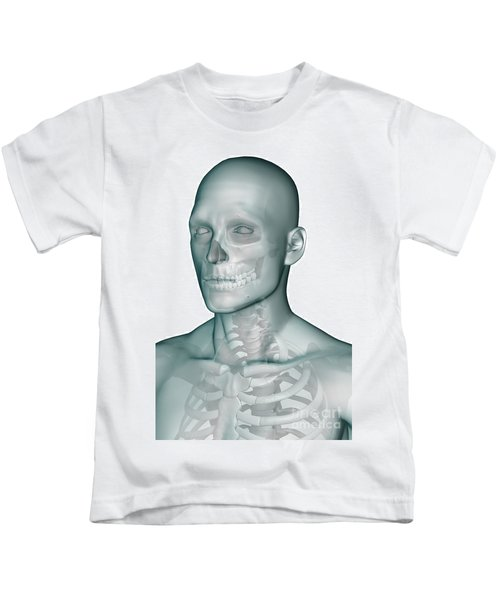 Bones Of The Head And Upper Thorax Kids T-Shirt