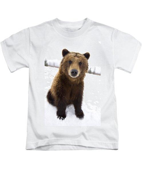 Captive Brown Bear Sitting In Snow At Kids T-Shirt