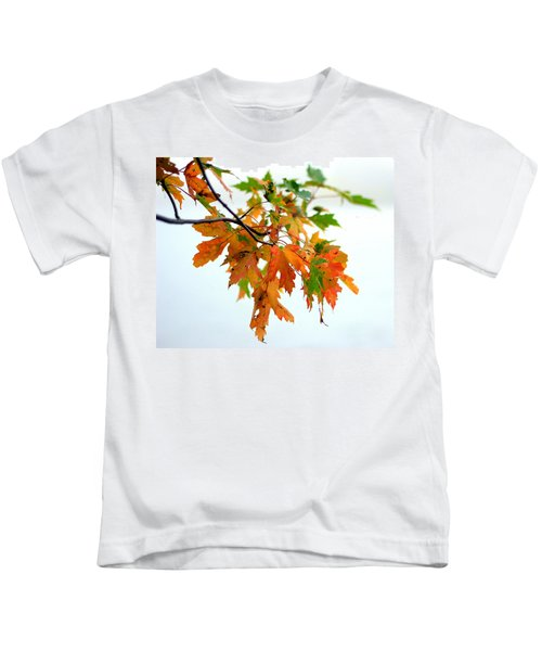 Changing Seasons Kids T-Shirt