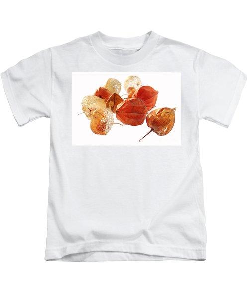 Chinese Lanterns Kids T-Shirt