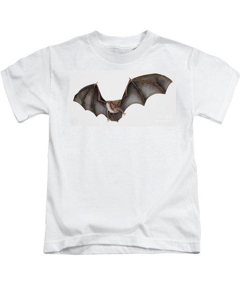 Daubentons Bat Myotis Daubentonii - Murin De Daubenton-murcielago Ribereno-vespertilio Di Daubenton Kids T-Shirt