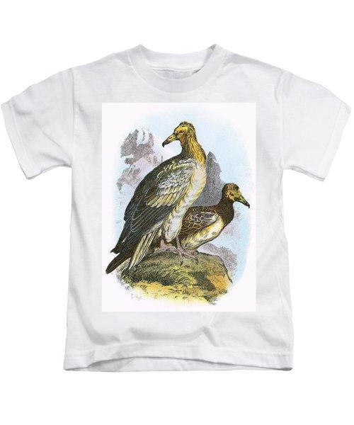Egyptian Vulture Kids T-Shirt