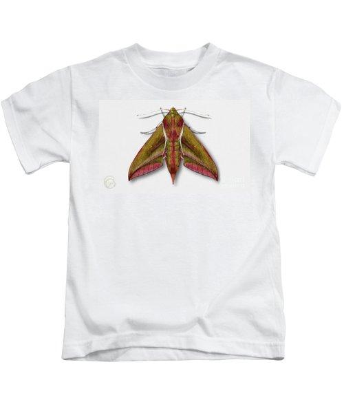 Elephant Hawk Moth Butterfly - Deilephila Elpenor Naturalistic Painting - Nettersheim Eifel Kids T-Shirt