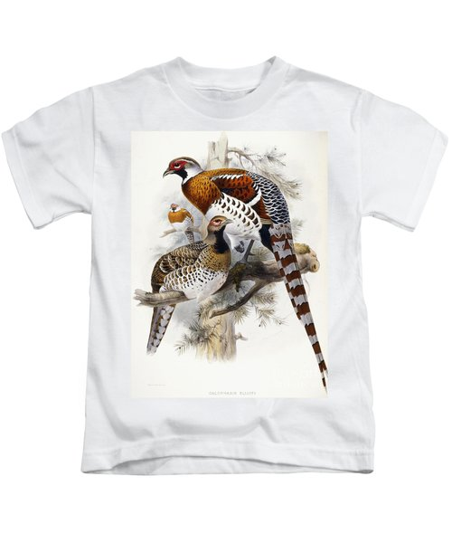 Elliot's Pheasant Kids T-Shirt by Joseph Wolf