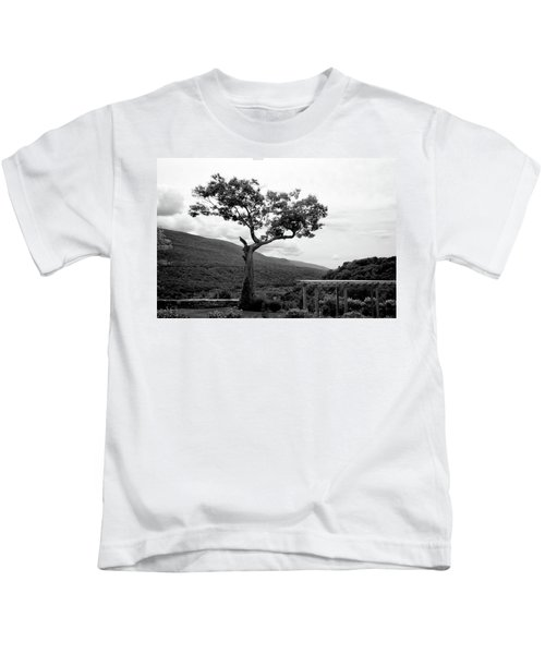 Hildene Tree 5689 Kids T-Shirt