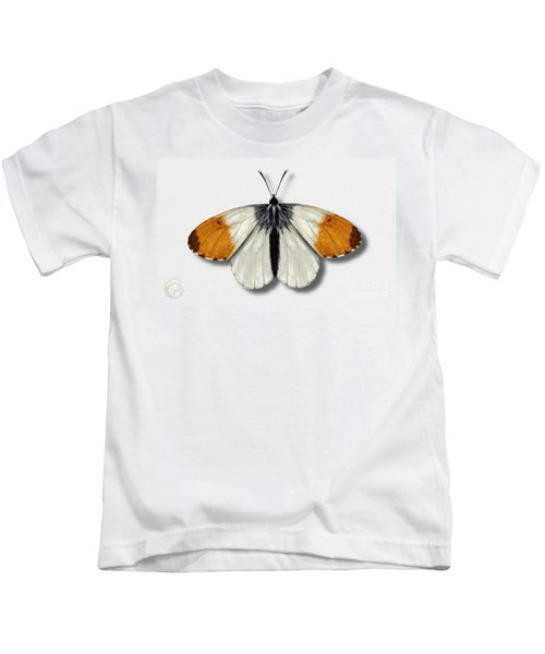 Orange Tip Butterfly - Anthocharis Cardamines Naturalistic Painting - Nettersheim Eifel Kids T-Shirt