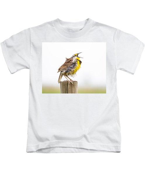Singing Meadowlark 3rd Of 3 Kids T-Shirt by Bill Swindaman