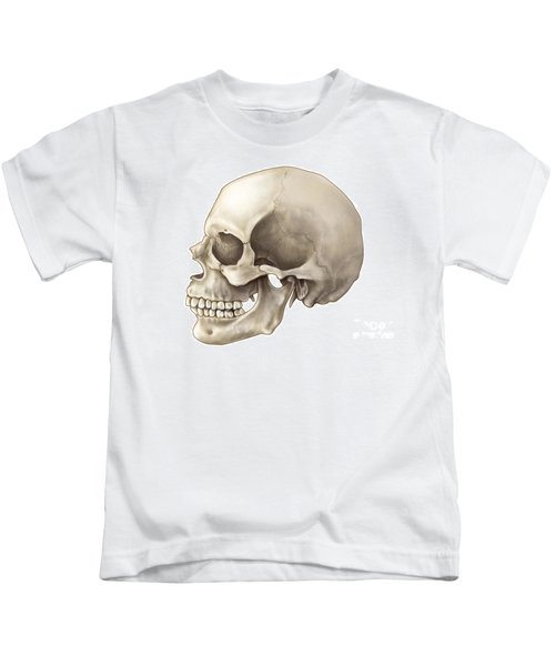 Skull Lateral View Kids T-Shirt