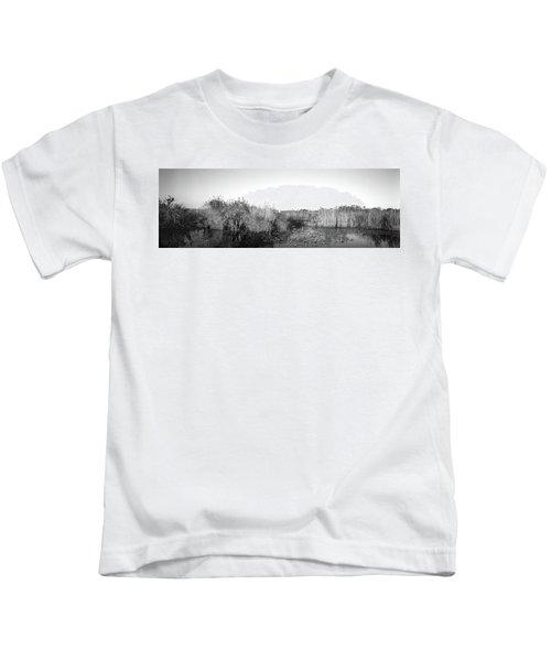 Tall Grass At The Lakeside, Anhinga Kids T-Shirt