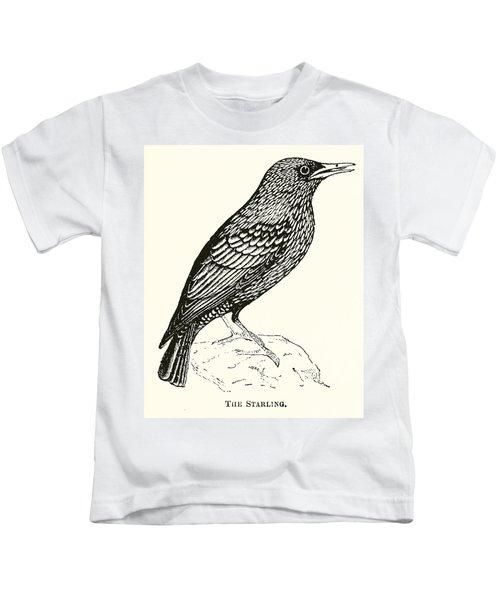 The Starling Kids T-Shirt by English School