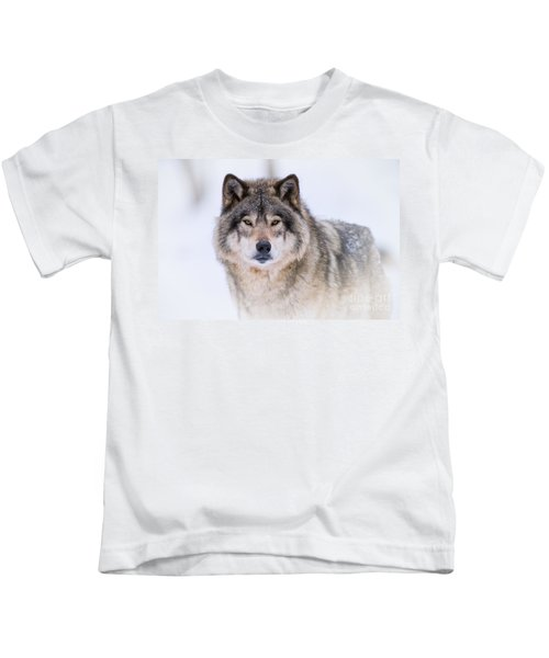 Timber Wolf Pictures 256 Kids T-Shirt
