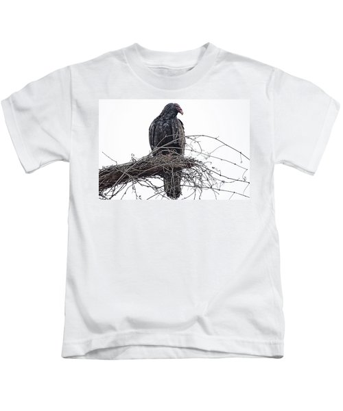 Turkey Vulture Kids T-Shirt by Douglas Barnard