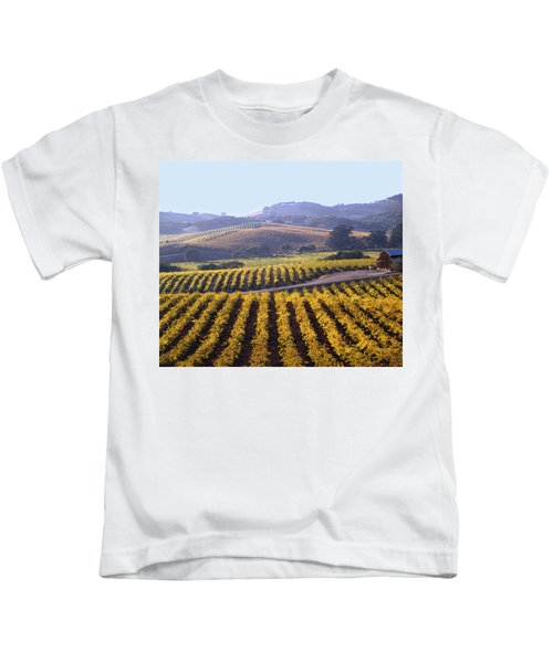 6b6386-vineyard In Autumn Kids T-Shirt