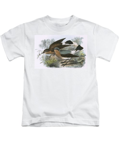 Wheatear Kids T-Shirt by English School