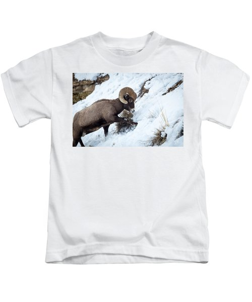 Yellowstone Bighorn Kids T-Shirt