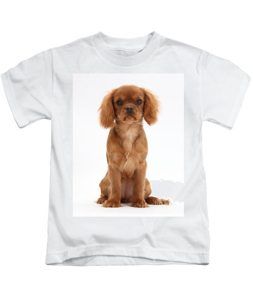 Cavalier King Charles Spaniel Puppy Kids T-Shirt
