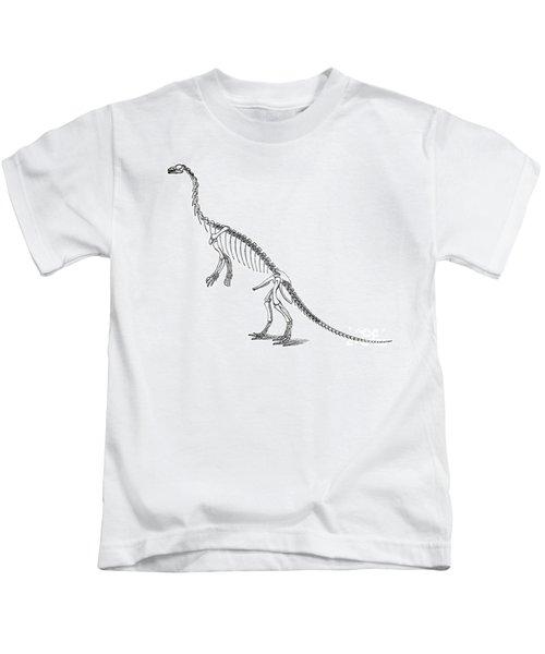 Anchisaurus Kids T-Shirt