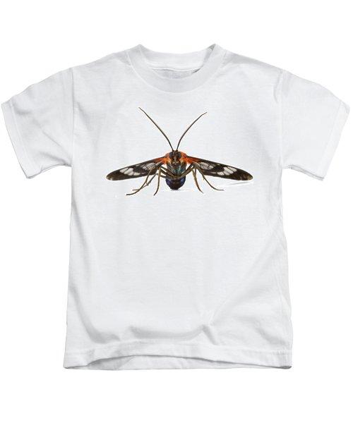 Clearwinged Tiger Moth Tapanti Np Costa Kids T-Shirt