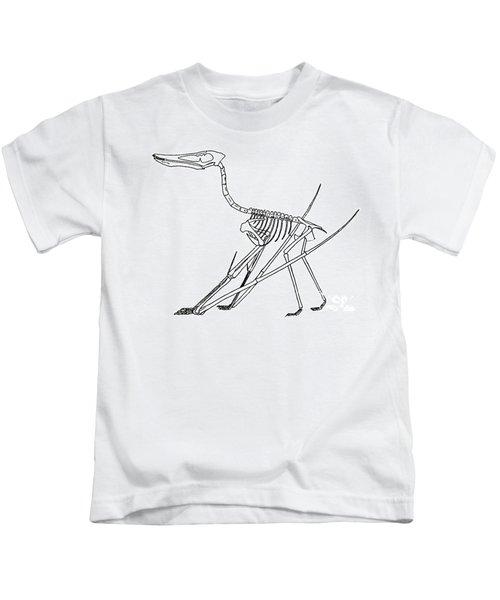 Cycnorhamphus Suevicus Kids T-Shirt