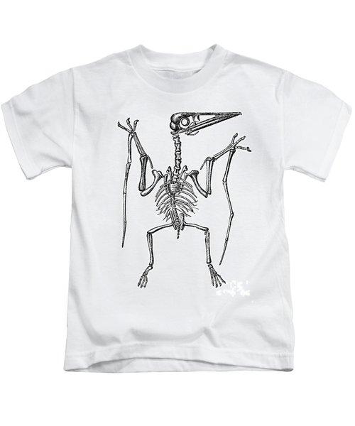 Pterodactylus, Extinct Flying Reptile Kids T-Shirt