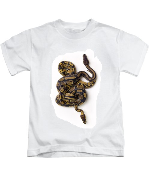 Two Ball Python Snakes Intertwined Kids T-Shirt