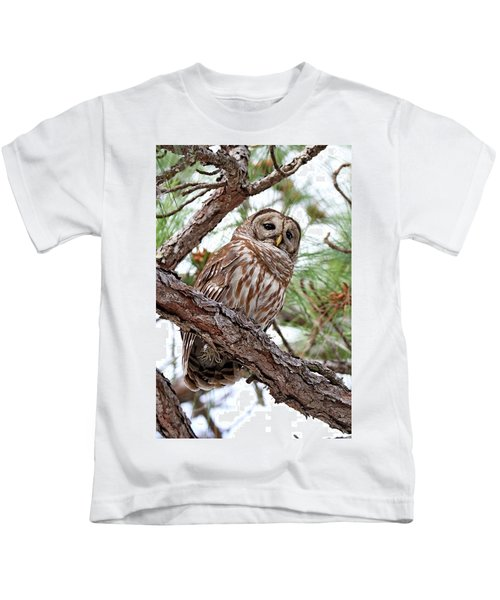 Barred Owl In Pine Tree Kids T-Shirt