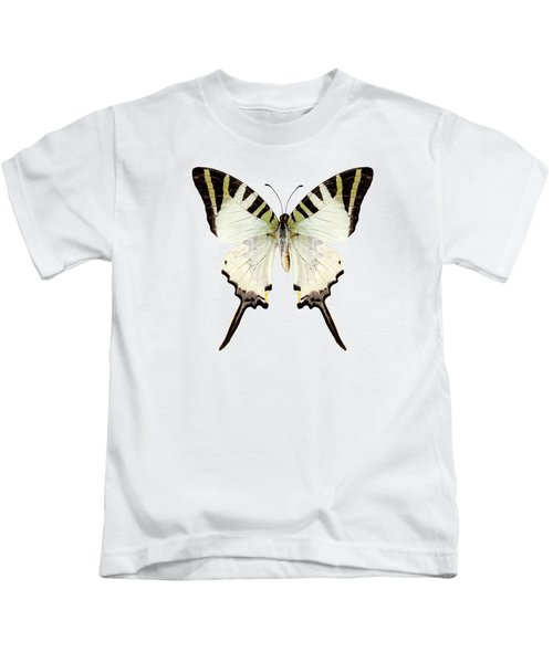 Butterfly Species Graphium Antiphates Kids T-Shirt