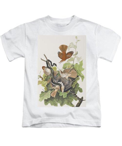 Ferruginous Thrush Kids T-Shirt