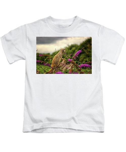 Meerkat Lookout Kids T-Shirt
