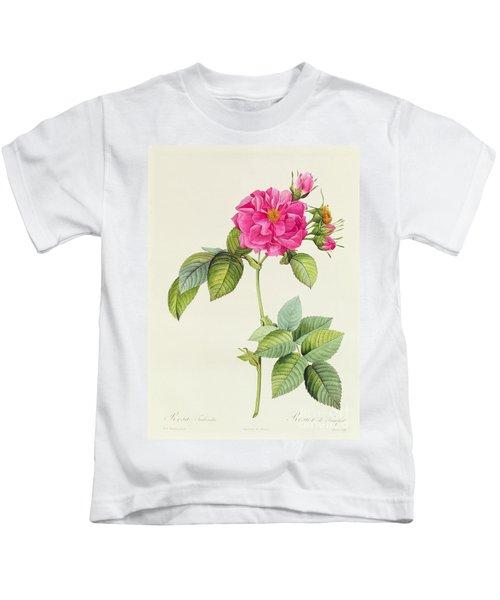 Rosa Turbinata Kids T-Shirt