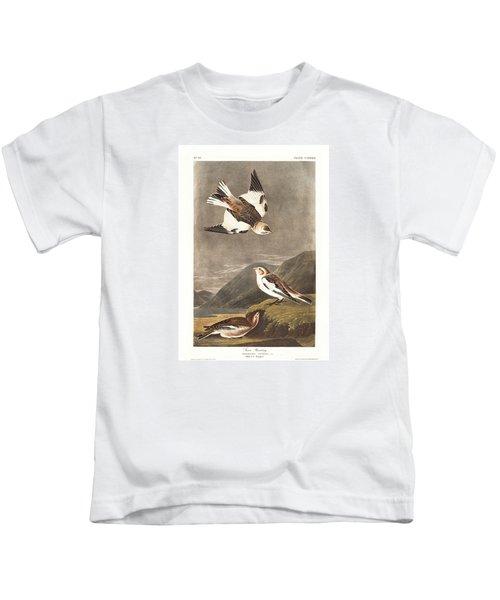 Snow Bunting Kids T-Shirt by Rob Dreyer