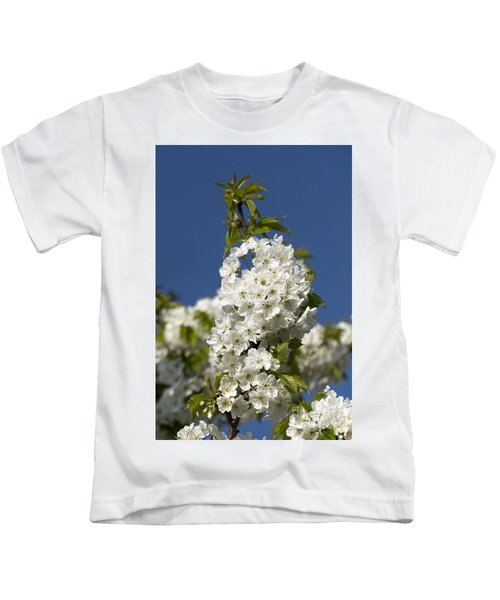 A Cluster Of Cherry Flowers Blossoming In The Springtime Kids T-Shirt