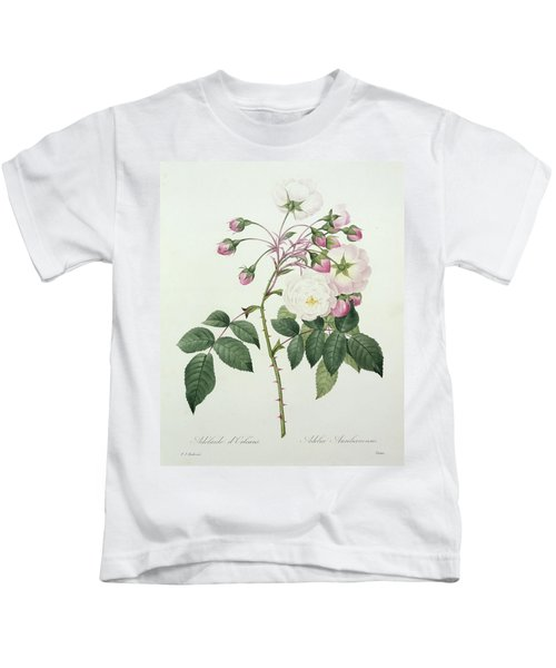 Adelia Aurelianensis Kids T-Shirt