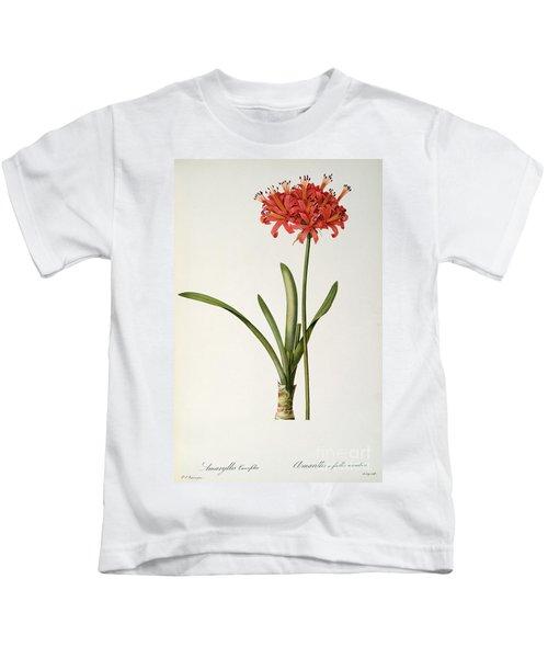 Amaryllis Curvifolia Kids T-Shirt