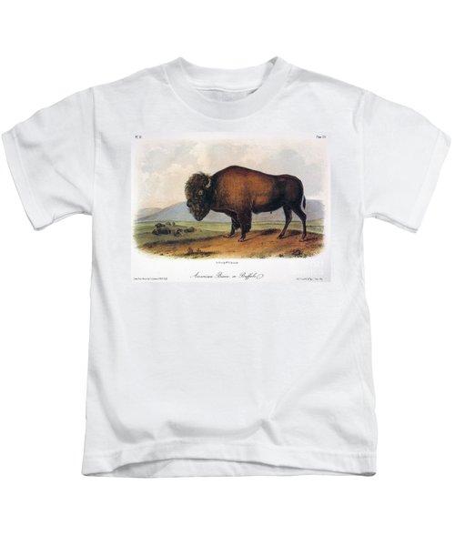 American Buffalo, 1846 Kids T-Shirt