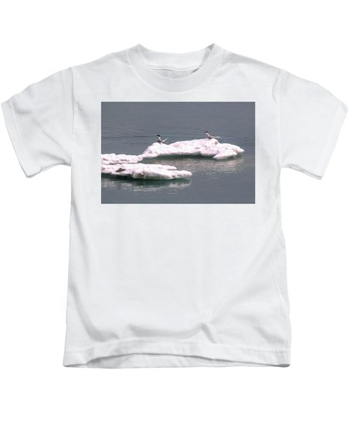 Arctic Terns On A Bergy Bit Kids T-Shirt