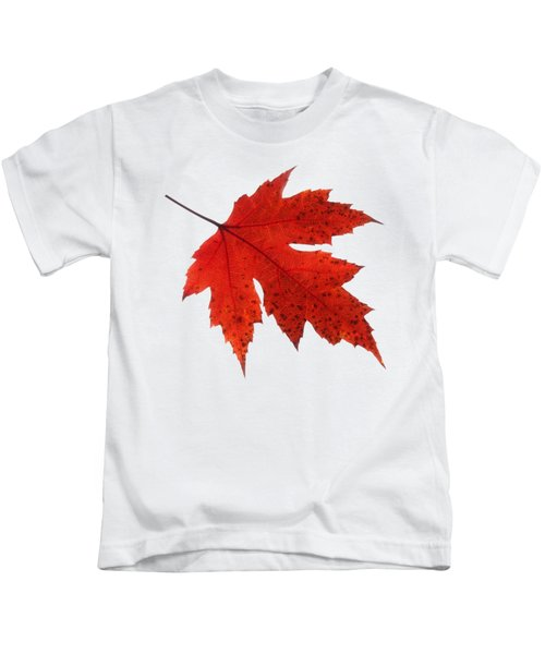 Autumn Leaf 2 Kids T-Shirt
