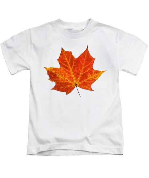 Autumn Leaf 3 Kids T-Shirt