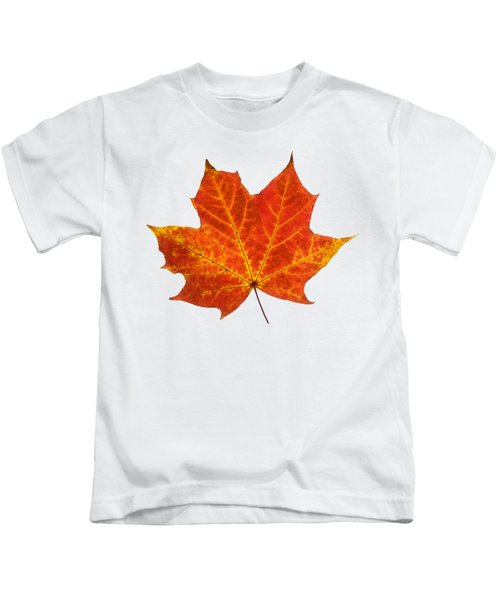 Autumn Leaf 3 Kids T-Shirt