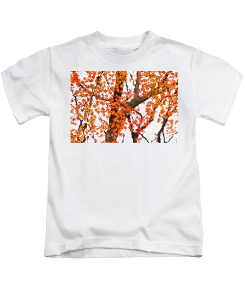 Autumn Red Leaves On A Tree   Kids T-Shirt