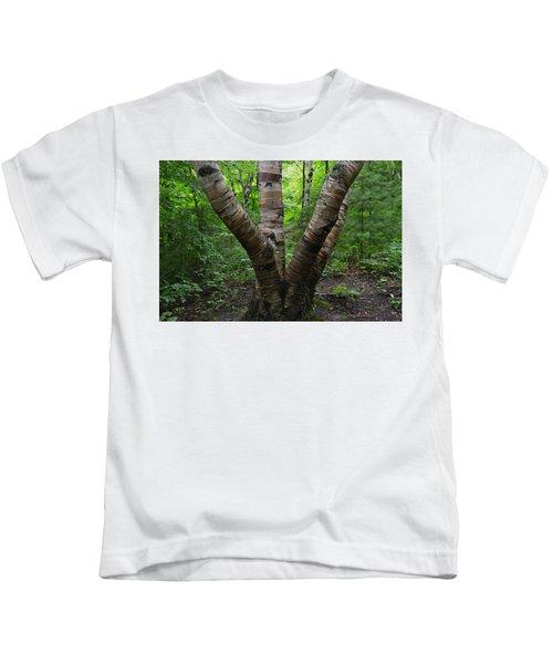 Birch Bark Tree Trunks Kids T-Shirt