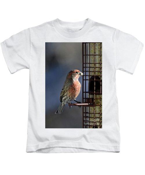 Bird Feeding In The Afternoon Sun Kids T-Shirt