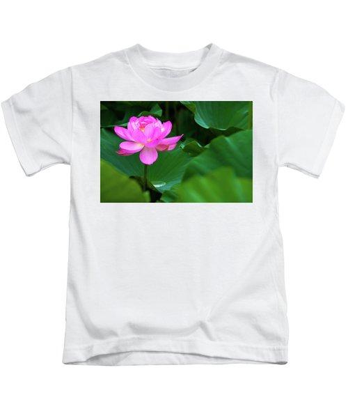 Blooming Pink Lotus Lily Kids T-Shirt