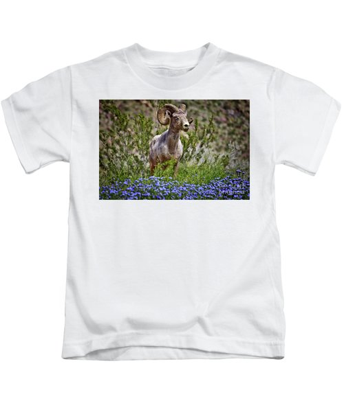 Blooms And Bighorn In Anza Borrego Desert State Park  Kids T-Shirt