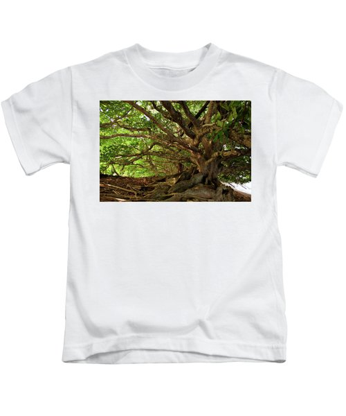 Branches And Roots Kids T-Shirt