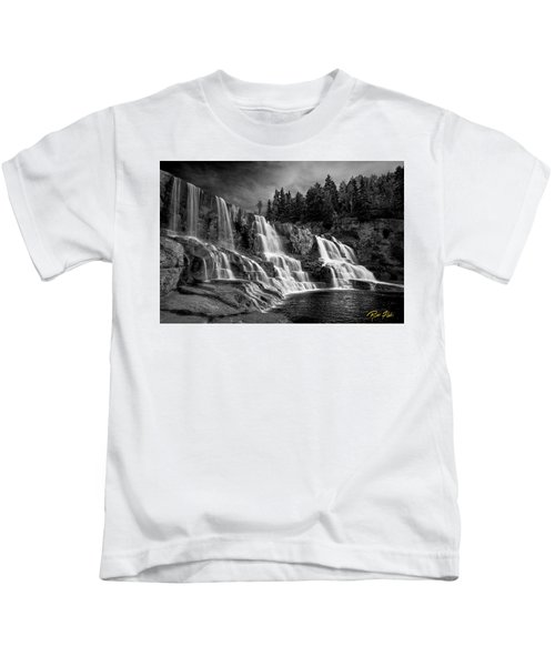 Brooding Gooseberry Falls Kids T-Shirt