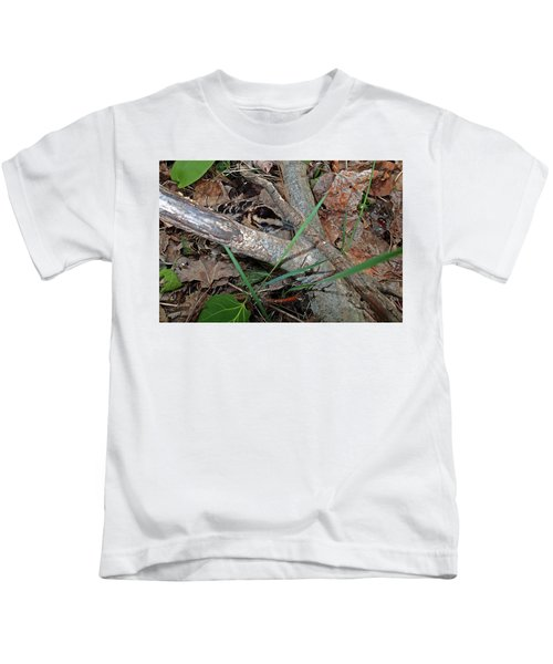Camouflage And Mimicry Of The Woodcock Chick Kids T-Shirt